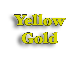 Gold & Yellow